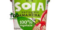 gelato vegano soia amarena auchan