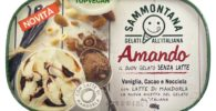 gelato vegano latte di mandorla cacao e nocciola sammontana